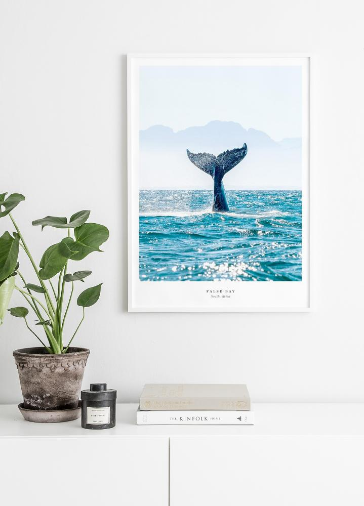 False Bay Poster